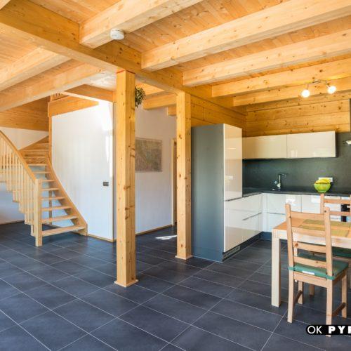moderní roubený dům