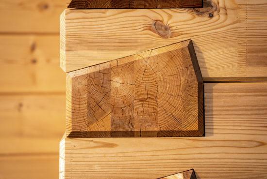 Typy a druhy dřevostaveb